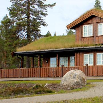 Bilde som viser hyttefasade med villmarkspanel fra Skjåk