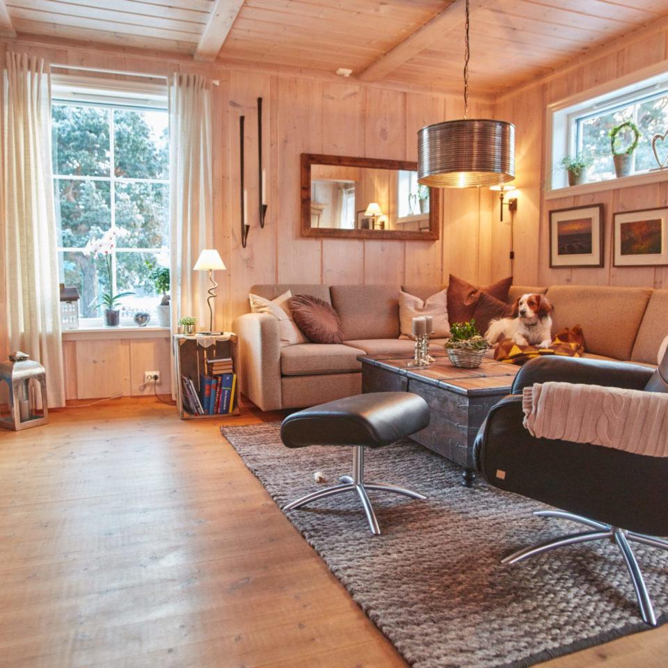 stue med innvendig villmarkspanel og falske takåser